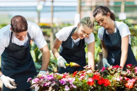 petites fleurs: groupe de jeunes jardiniers travaillant � l'int�rieur � effet de serre Banque d'images