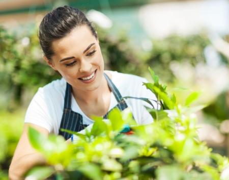 pretty young woman gardening  photo