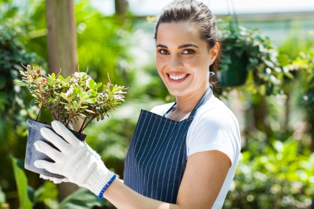 small plant: happy female nursery worker in greenhouse Stock Photo