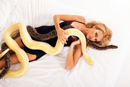 pythons: sexy young woman lying on bed with two pythons Stock Photo