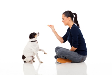 treat: modern woman training a dog isolated on white background