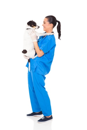 professional vet doctor holding a dog isolated on white Stock Photo - 18635866