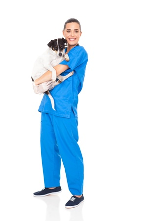 caring veterinarian holding a dog isolated on white background Stock Photo - 18635861