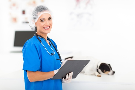 attractive female vet doctor in office photo