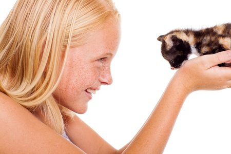 caring teen girl holding a little kitten isolated on white photo