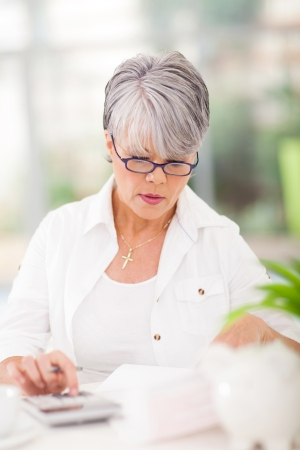 beautiful middle aged woman doing her accounts at home Stock Photo - 22404476