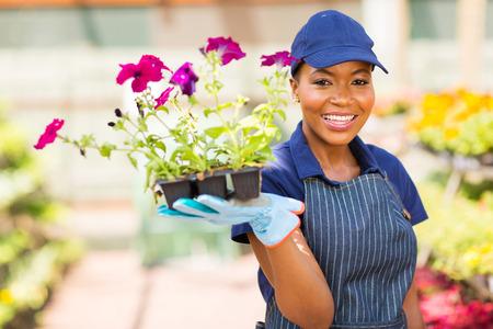 mujer trabajadora: feliz educadora africano sosteniendo flores en invernadero Foto de archivo