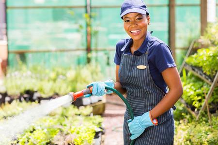 african american woman business: happy african female nursery worker watering plant
