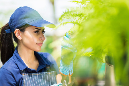 blue collar: young florist checking flowers condition in greenhouse