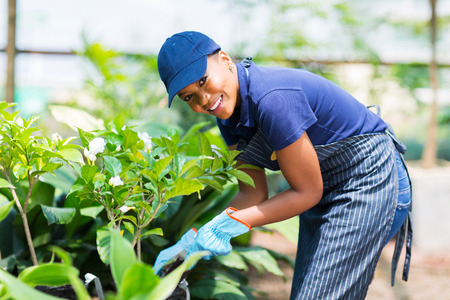 beautiful afro american woman working in nursery garden photo