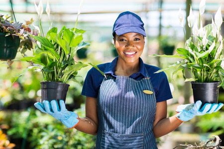 happy african florist holding two potted flowers in greenhouse
