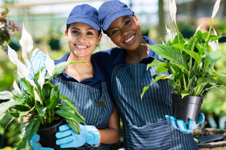 cute female nursery co-workers with pot of flowers inside greenhouse photo