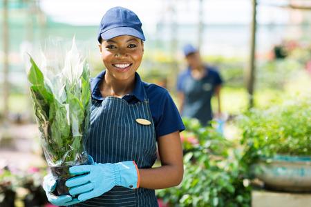 petites fleurs: portrait de mignon africain jardinier f�minin am�ricain tenant une plante Banque d'images