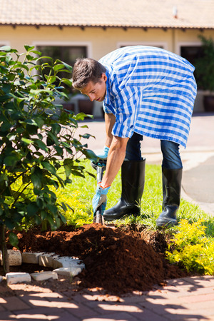 young man digging a hole before planting a shrub in home garden photo