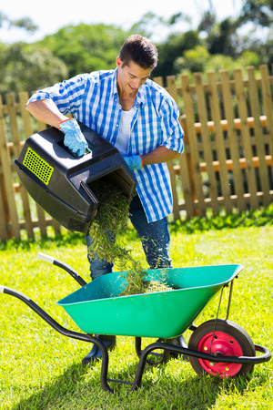 young man emptying lawnmower grass into a wheelbarrow after mowing photo