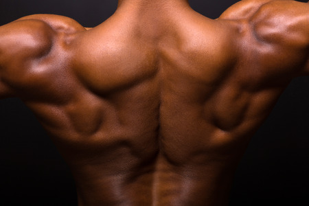 african muscular bodybuilders back on black background photo