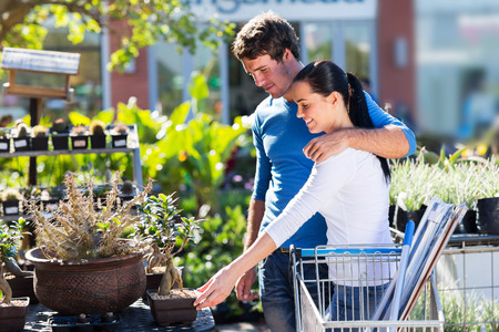 lovely couple: happy young couple shopping for bonsai in nursery