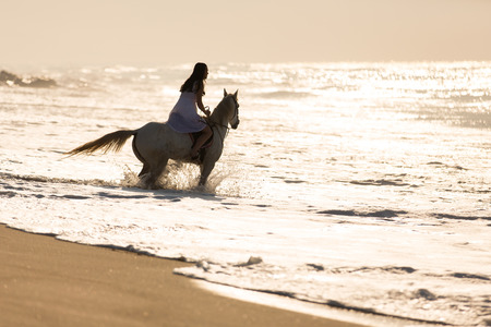 pretty young woman horse ride on the beach photo