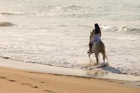 back view of young lady horse ride on the beach Фото со стока