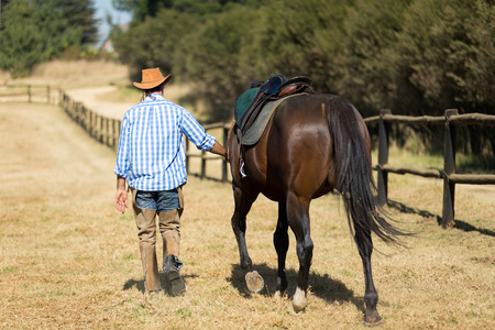 rear view of cowboy walking with his horse