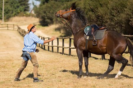 calm down: allevatore cercando di calmare il suo cavallo Archivio Fotografico