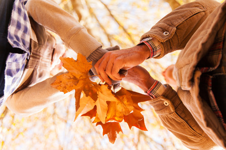 underneath view of couple holding autumn leaves photo