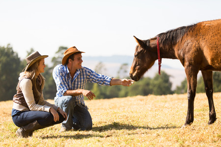 ranches: cowboy and cowgirl playing with foal in the ranch