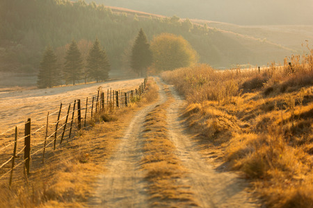 autumn path: autumn rural path in the mountain Stock Photo