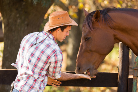 working cowboy: cowboy feeding a horse out of hand