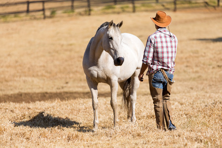 rear view of cowboy and horse  Stock Photo