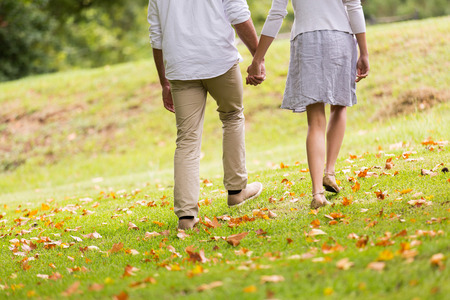 countryside loving: back view of young couple holding hands walking in park