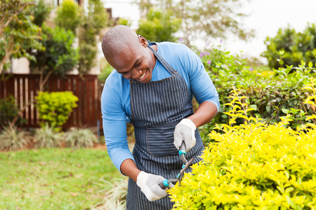 front house: happy african american man trimming plants at home garden