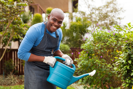 regando plantas: alegre hombre africano joven regar las plantas