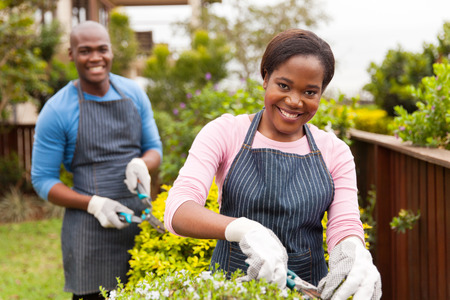 family gardening: portrait of beautiful young black couple working together in home garden Stock Photo