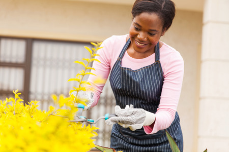 green and black: beautiful young african woman trimming plants in her front yard