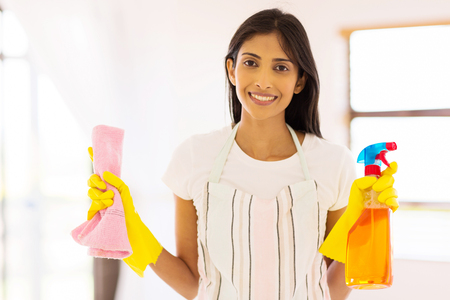 housework: pretty indian housewife doing housework