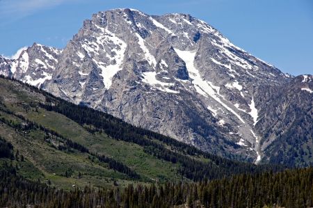 A green forested slope serves as forground to a glacier covered mountain peak at Grand Teton National Park