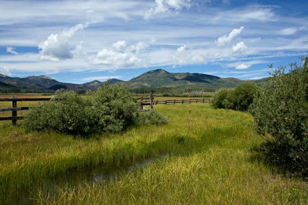 colorado landscape: Steamboat Lake Mountain Meadow
