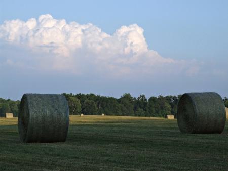 Hay bales at Virginia Farm Stock Photo