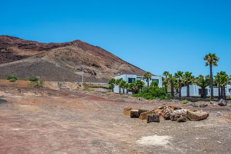 Plams and white houses near  Montana Roja, Lanzarote