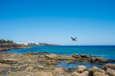 Lava stones on shore near Playa Blanca, Lanzarote
