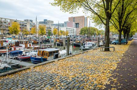 netherlands: Autumn in Rotterdam, Netherlands