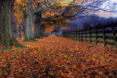 Autumn at Springton Manor Farm, Pennsylvania. Stock Photo