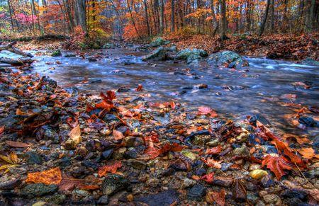 indian creek: Indian Run Creek, Pennsylvania in Autumn.