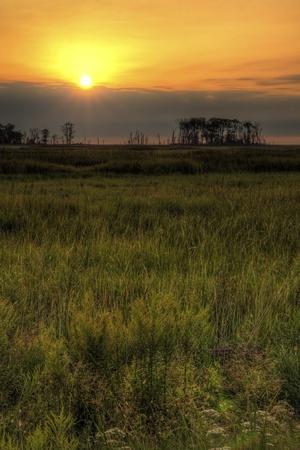 Sunrise over the marsh land at Bombay Hook wildlife refuge.