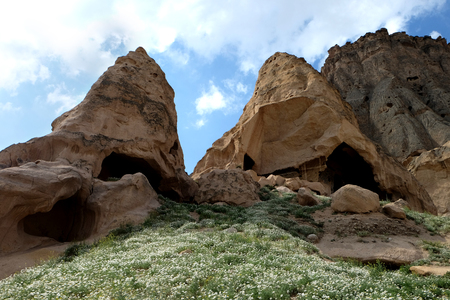 rock formation: Ruins of huge caves in Capadocia city, Turkey with flower field in the foreground