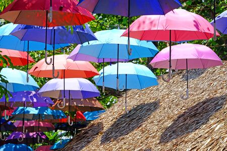 Opening colorful umbrellas hanging over the dried grass roof Stock Photo