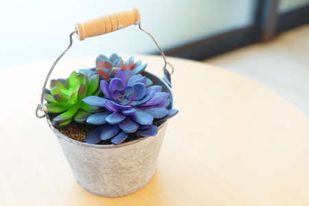 Colorful fresh flowers plant in a small metal flowerpot on round table