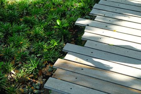 Part of wooden walkway through green garden with morning sunshine shadow Foto de archivo