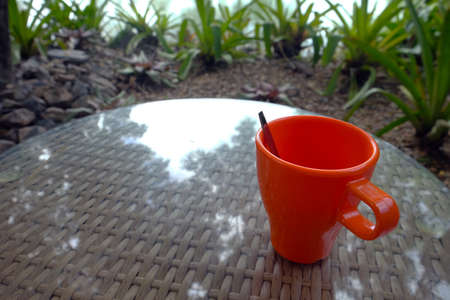 Orange plastic cup on round surface table with reflection from tree